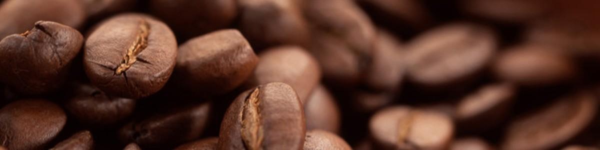 7gr: miscele di caffè pregiate per bar